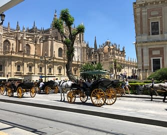 Guide to Seville.