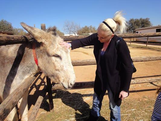 At the Donkey Sanctuary.